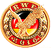 12-RWE-1.png